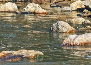 rocks-in-a-river-1522492505rFY